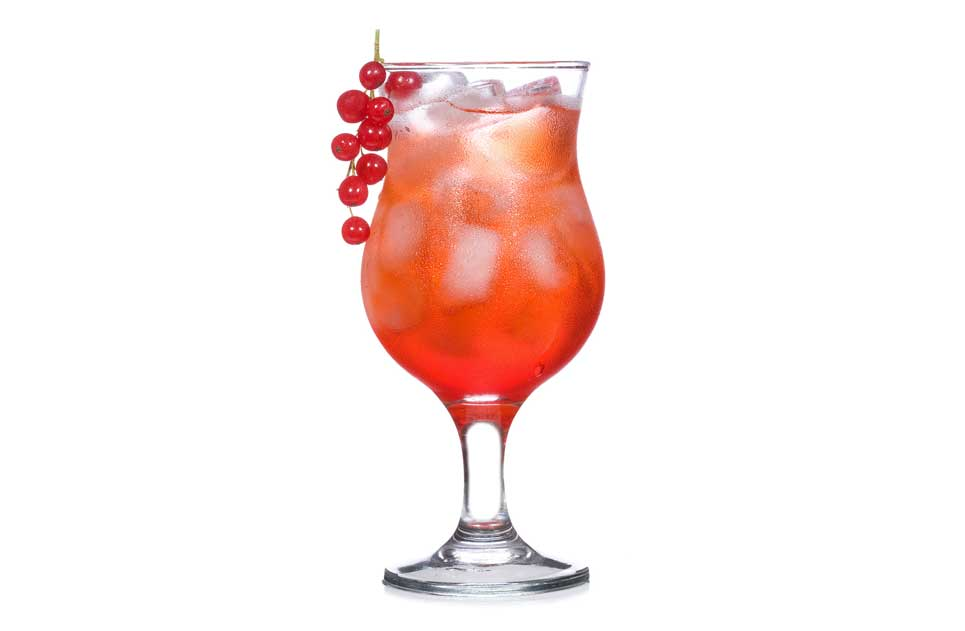 Coctail Rose